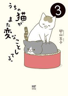 うちの猫がまた変なことしてる。|卵山玉子(たまごやま・たまこ)|コミックエッセイ劇場