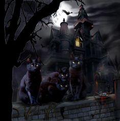 Halloween Artwork, Halloween Painting, Halloween Pictures, Spooky Halloween, Vintage Halloween, Happy Halloween, Magic Cat, Black Cat Art, Black Cats