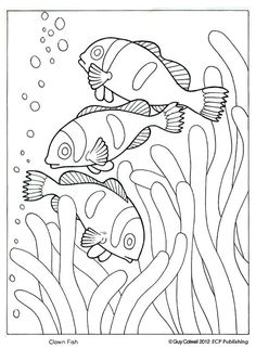 clown fish coloring, ocean animal coloring pages