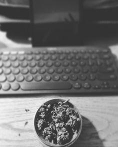 night & day • ⌨️✌⌨️ • #lastnight #thismorning #nightandday #logitech #wirelesskeyboard #gamechanger #amazon #amazonfirehd8 #writing #writingcommunity #poetrycommunity #poetsofinstagram #stonersofinstagram #organic #medicinal #marijuana #advancednutrients @advancednutrientsofficial #peace #breakfast #yogurt #balanceddiet #canada #reeseporfirio #artheals #natureheals #mentalhealth #follow #instagram #twitter #googleplus #facebook #tumblr #wordpress