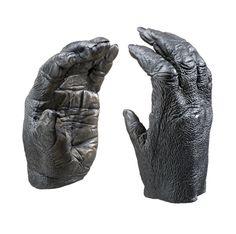 gorilla hands - Pesquisa Google