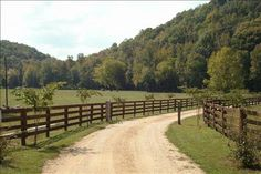 Beautiful drive up to home!  TENNESSEE CATTLE FARM IN CLIFTON-FENCING-CREEK