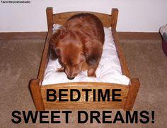 Sleepy Bye Time!