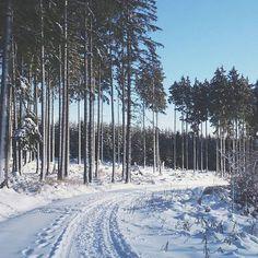 Winterwanderung ❄ im Harz, Germany wandern, adventure, travel, snow, winter, woods