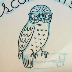 Owl two.