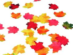 Mini Fall Maple Leaves - Table Scatter