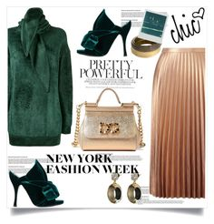 """""""What to Wear to NYFW"""" by lidia-solymosi ❤ liked on Polyvore featuring Balenciaga, Miss Selfridge, N°21, Dolce&Gabbana, Alexis Bittar, Polaroid and NYFW"""