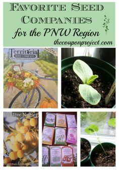 Gardening: From Seed to Harvest – Favorite Seed Companies  for the PNW Region