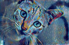 Cat | Created with Painnt app | Filter > Violet Shades. Painnt uses neural networks to generate gorgeous artwork from your Camera roll. #trippy #digitalart