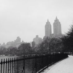 Central Park – Photo by katecolumbia