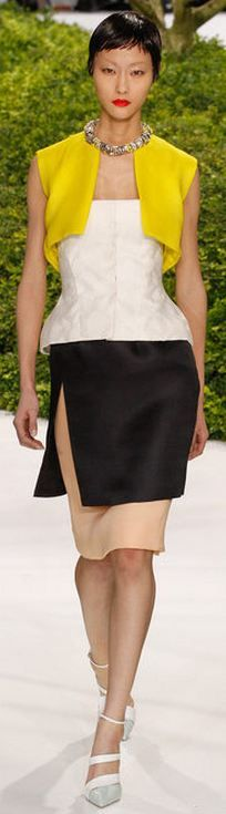 Christian Dior - Haute Couture S/S 2013