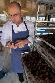 Jacob Torreblanco, Paco Torreblanca Totel plant, Monover-Elda, Alicante. Photo by Gerry Dawes©2011. Contact gerrydawes@aol.com