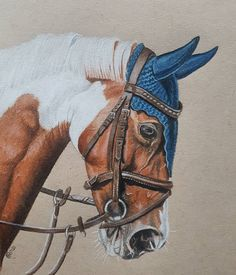 """""""Mi piace"""": 2,849, commenti: 20 - @pencilpony su Instagram: """"Merry Christmas Everyone! Here is the finished picture of one of my favourite insta horses to watch…"""""""