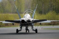 finland armed forces | Hornet - airforce (70142). airforce, airplane, armed forces, aviation ...