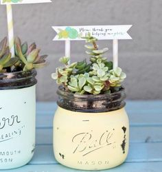 Mother's Day DIY- Succulents