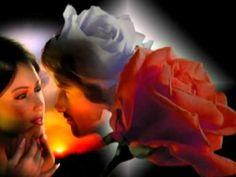 Demjén Ferenc-Elképzelt szerelem - YouTube Musical, Youtube, Regional, Flowers, Plants, Floral, Plant, Royal Icing Flowers, Youtubers