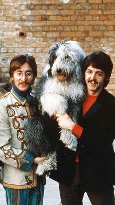John Lennon, Paul McCartney and Martha Foto Beatles, Les Beatles, Beatles Photos, John Lennon Beatles, Ringo Starr, Pop Rock, Rock N Roll, John Lennon Paul Mccartney, Old English Sheepdog