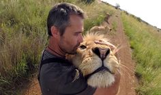 Male Lion Compilation | The Lion Whisperer