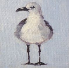 Sea Bird Painting Gull Small Canvas 4x4 by smallimpressions