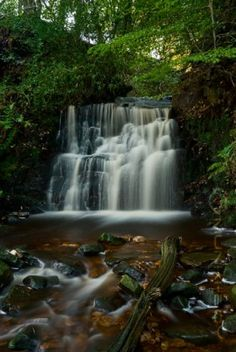A picturesque waterfall in a shady ravine in Tigers Clough. Britain, United Kingdom, Cool Pictures, Things To Do, Waterfall, England, Tours, Landscape, Travel