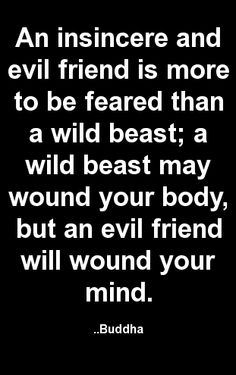 An insincere and evil friend is more to be feared than a wild beast; a wild beast may wound your body, but an evil friend will wound your mind. Buddha