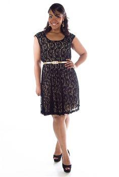 Divine Date Plus Size Belted Lace Dress - Black