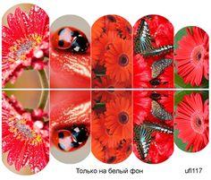 Слайдер-дизайн премиум, Цветы ufl117 - 1