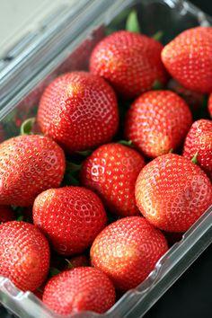 Strawberry Rhubarb Bars – Amandeleine Strawberry Rhubarb Recipes, Rhubarb Desserts, Rhubarb And Custard Recipes, Full Fat Yogurt, Chocolate Turtles, Strawberries, Cherries, Fruit Picture, Dessert Salads