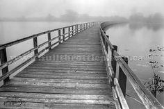 Swan Lake Bird Sanctuary in Victoria, British Columbia 1993
