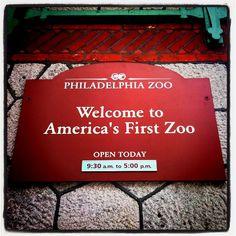 Go to the Philadelphia Zoo