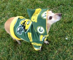 This dog is ready for the season: Greenbay Packers NFL Dog Hoodie FREE SHIPPING. $35.00, via Etsy.