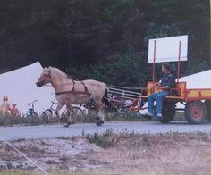 Wietze, van Bagage vervoer Wietze de Boer op Stortemelk,