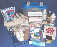 a pet first aid kit - I need to put one together sooner rather than later