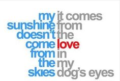 Where my #sunshine comes from. #dogs