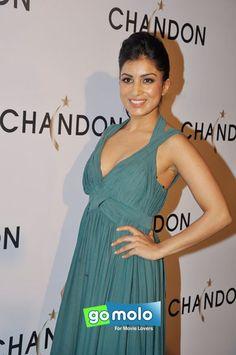 Pallavi Sharda at the Launch of Chandon sparkling wine at Hotel Four Seasons in Mumbai