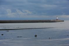 The Pier in Berwick upon Tweed in Northumberland