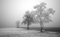 paisaje-de-invierno.jpg (1600×1000)