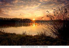 Najděte stock snímky na téma Sunrise On Pond Birds v HD a miliony dalších stock fotografií, ilustrací a vektorů bez autorských poplatků ve sbírce Shutterstock.  Každý den jsou přidávány tisíce nových kvalitních obrázků. Pond, Sunrise, Birds, Celestial, Photography, Outdoor, Image, Outdoors, Fotografie