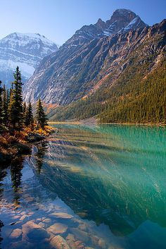 studioview: Mt.  Edith Cavell e lago Cavell, Jasper National Park, Alberta, Canadá por Ron Niebrugge