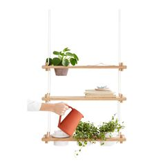 s Riippu Garden Shelf has four holes sized cm, designed to fit four flower pots. You can use your own pots or Riippu flower pots which are sold separately. Hanging Shelves, Wood Shelves, Floating Shelves, Garden Shelves, Home Grown Vegetables, Storing Books, Shelf System, Sustainable Furniture, Scandinavian Living