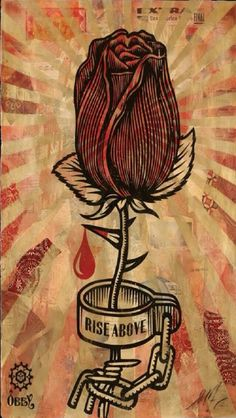 Rose shackle