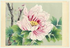 Ikeda:  Peonies Woodblock Print