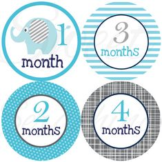 Monthly Onesie Stickers for Boys- Blue and Gray Elephants - Elephant Stickers. Paste on white onesies every month for a picture