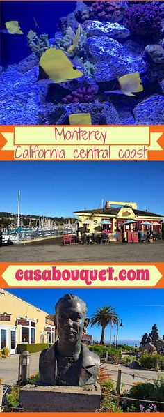 The California central coast includes the oceanside towns of Monterey and Carmel and Pacific Grove. Monterey Bay Aquarium, historic missions, and more!