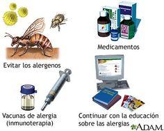 La Primavera: Temporada de Alergias.