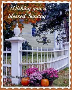 Wishing You A Blessed Sunday.
