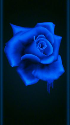 By Artist Unknown. Blue Roses Wallpaper, Flower Phone Wallpaper, Beautiful Flowers Wallpapers, Beautiful Roses, Blue Wallpapers, Pretty Wallpapers, Vintage Flowers, Blue Flowers, Purple Roses