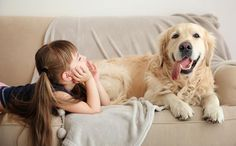 Veja quais são os sofás e tapetes ideais para quem tem animais de estimação. Tecido dos estofados deve ser resistente e de fácil limpeza.