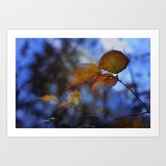 Blue autumn Art Print by Guido Montañés - $20.00