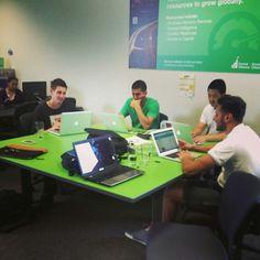 Campusgrids Team working on work.